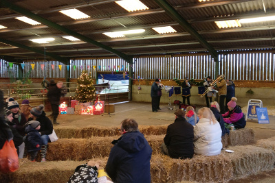 Playing Little Donkey at the RSPCA Lockwood Donkey Sanctuary's fayre